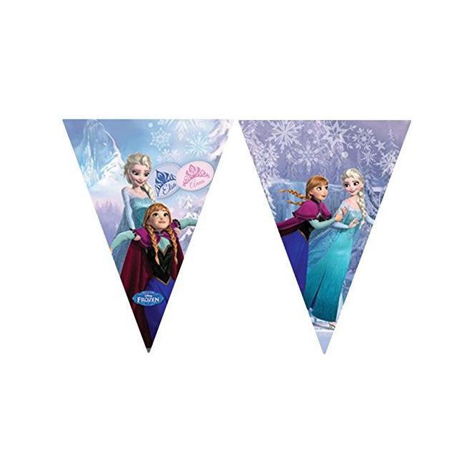 Plastic Flag Banner - Frozen