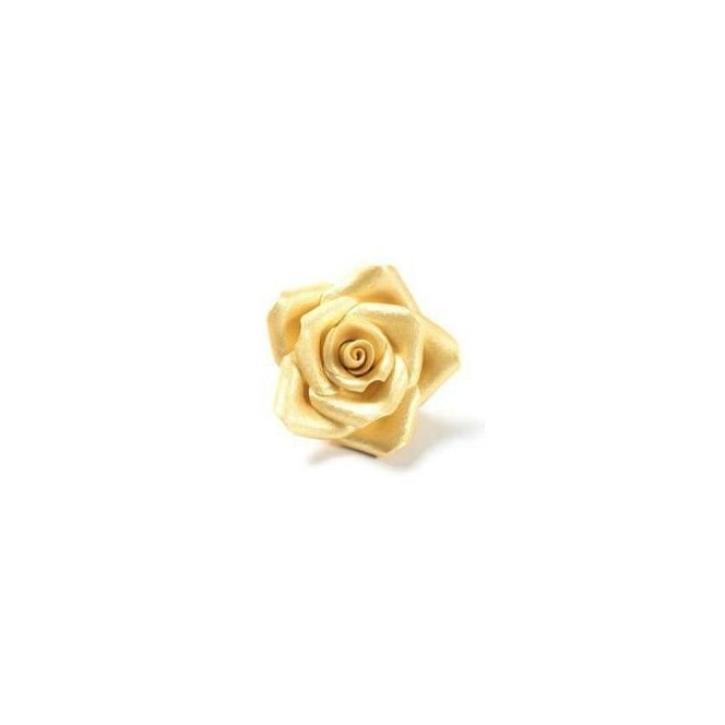 Big Gold Sugar Rose