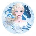 Edible Disc - Frozen II (theme 1) - Dekora